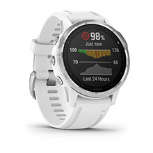 GARMIN Fenix 6S White with White Band