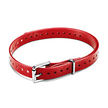 GARMIN 3/4 in Roller Buckle Collar Strap Red for delta, mini t5, tt15