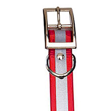 GARMIN Reflective Collar Strap Red for DC 40