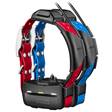 GARMIN TT 15 x 2 GPS Dog Tracking and Training Collars