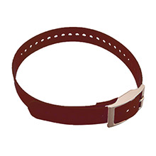 GARMIN Collar Strap for DC 40 Burgundy