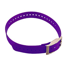 GARMIN Collar Strap Purple