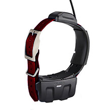 GARMIN DC 50 Burgundy GPS Dog Tracking Collar with 90 day wty