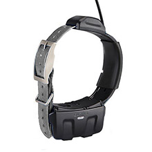 GARMIN DC 50 Gray (Silver) GPS Dog Tracking Collar with 90 day wty
