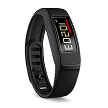 GARMIN Vivofit 2 Black EFIGS