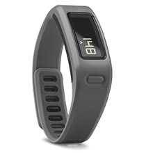 GARMIN Vivofit Slate with HRM